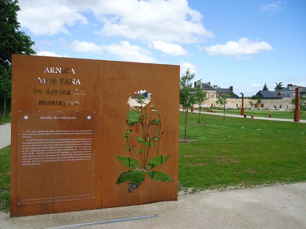 atelier-de-saint-georges_aménagement-paysager_jardin-du-cloitre_petit-quevilly (21)