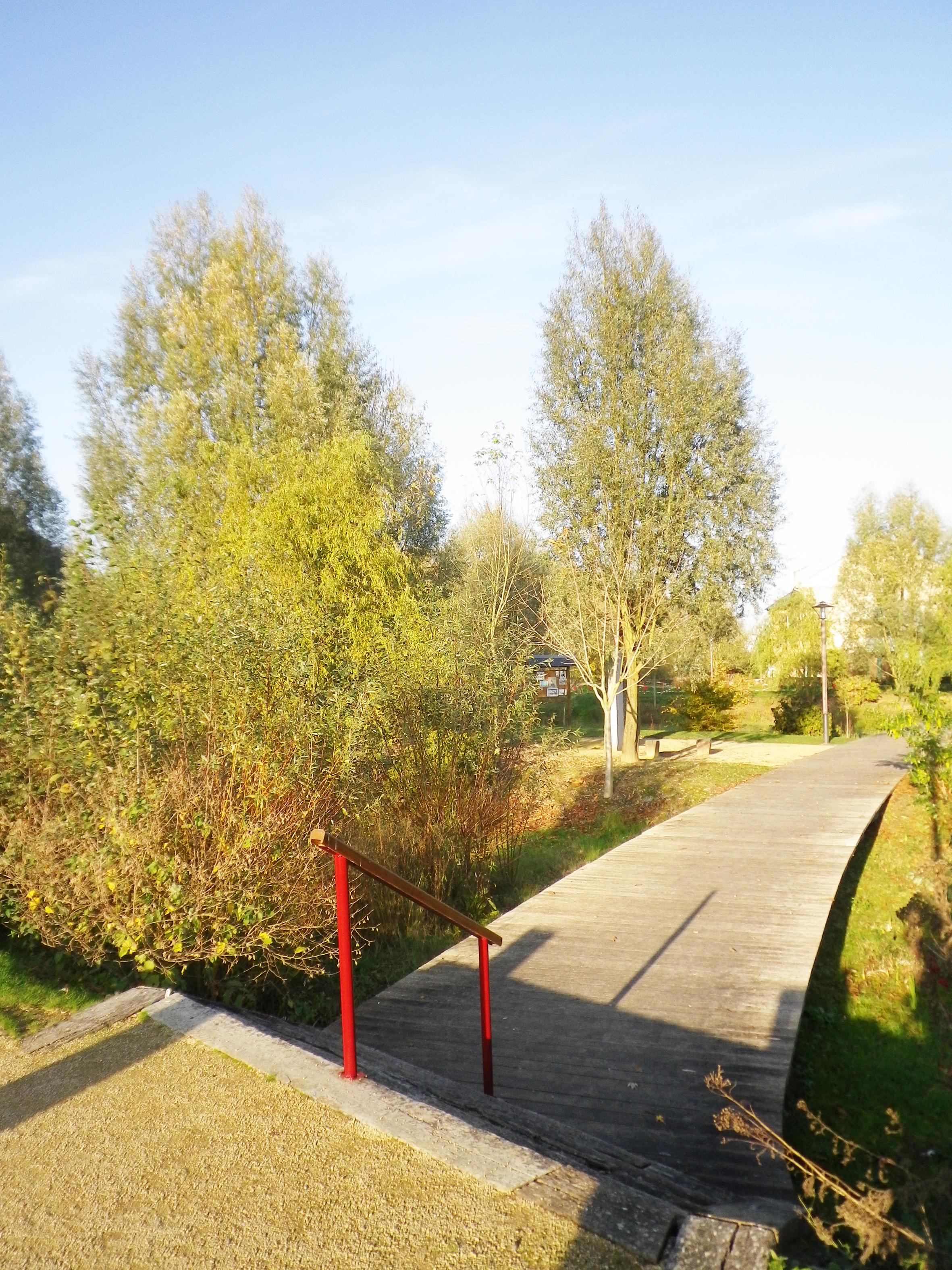 atelier-de-saint-georges_aménagement-paysager_parc-des-eaux-mêlées_duclair (11)