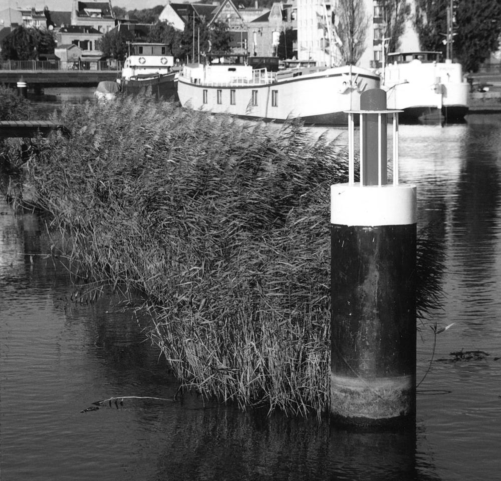 atelier-de-saint-georges_aménagement-urbain_aménagement-des-berges-de-la-lézarde_harfleur (2)